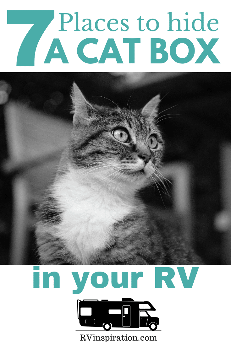 RVing with cats? Here are some ideas for where to put the litter box. #RVingWithCats #RVingWithPets #RV
