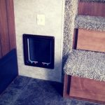 7 Places to Hide a Cat Box in an RV
