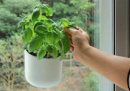 Okidome window suction planter