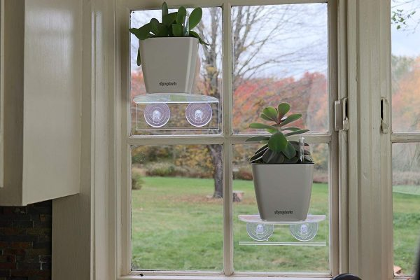 Suction cup shelf for plants in RV