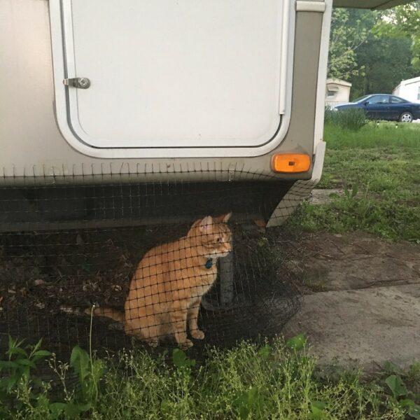 Netting around bottom of RV to create cat enclosure