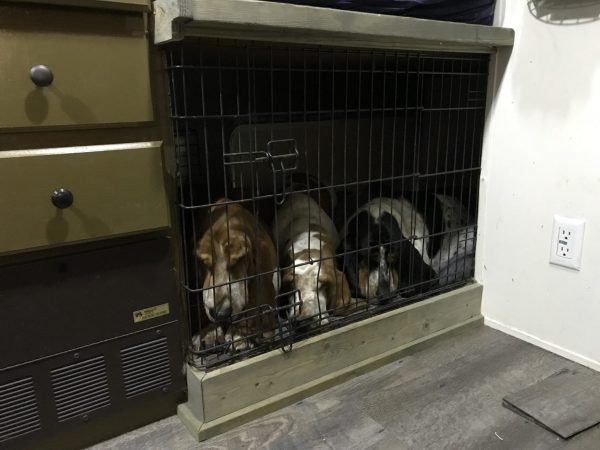 Storage area under travel trailer converted to dog kennel